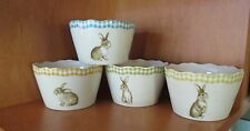 222 Fifth Bunny Land Rabbit 8 Appetizer Dessert Fruit Bowls NWT Easter