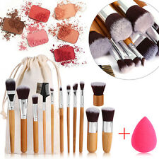 Professional 11 Pcs Makup Brushes Set Powder Eyeshadow Eyeliner Lip Brush Tool
