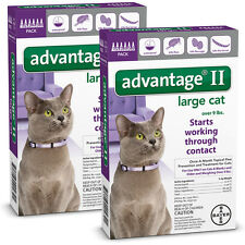 Advantage II for Large Cats (over 9 pounds) 12 Month Supply (not in box)
