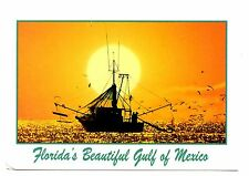 Florida Gulf of Mexico Postcard Sunset Shrimp Boat Seagulls Birds Unposted Sun