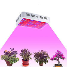 1000W Double Chip LED Grow Light Lamp Full Spectrum for Medical Indoor Plant Veg