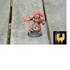 Warhammer 40K Army Space Marines Veteran Painted