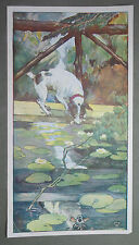 DOG and his REFLECTION : ART NOUVEAU PRINT By R. Bull, Animals Watercolour C1905