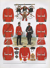 VINTAGE MILITARY BRITISH UNIFORM PRINT ~ 1856 INFANTRY OF THE LINE OFFICERS