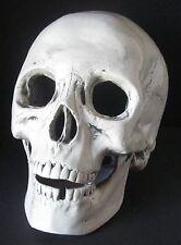 Ceramic Aquarium Decoration ~ Large Skull ~