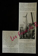 Document photo PECHE THON GEANT SCARBOROUGH 1932 clipping