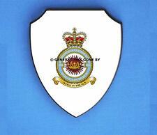 ROYAL AIR FORCE 906 EXPEDITIONARY SUPPORT WING WALL SHIELD (FULL COLOUR)