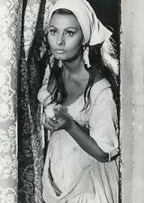 SOPHIA LOREN LA BELLE ET LE CAVALIER  1957 VINTAGE PHOTO