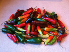ASSORTED HOT PEPPERS - CUSTOM MIX! 25 SEEDS COMBINED S/H!