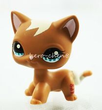 2'' Cute Brown Cat Hasbro Littlest Pet Shop LPS Figure Toys Animals #1170