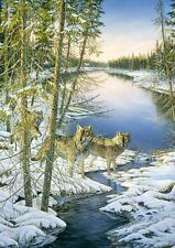 "Sam Timm ""NORTH COUNTRY"" Wolves Wolf Pack Winter BOXLESS Jigsaw Puzzle *NEW*"