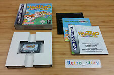 Nintendo Game Boy Advance GBA Hamtaro Rainbow Rescue PAL