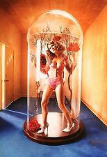 David Lachapelle Ltd Ed. Photo 35x50cm Kirsten Dunst 2001, Pamela Anderson Nude