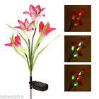 Outdoor LED Solar Lily Flower Lawn Light Garden Lamp for Yard Decoration