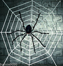 GIANT DELUXE SPIDER WITH 2M WHITE HALLOWEEN FURRY SPIDERS WEBBING WEB DECORATION
