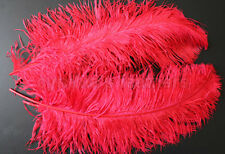 "1 pc of 18-20"" Male Red Ostrich Drab Plume Feather for Wedding decor, Millinery"