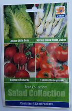 SALAD SEED COLLECTION MIXED 4 IN 1 - LETTUCE, SPRING ONION, BEETROOT, TOMATO