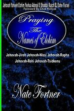 Praying the Names of Elohim by Nate Fortner (2012, Paperback, Large Type)