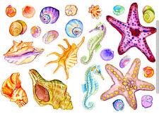 Fliesenaufkleber Muscheln Seesterne Möbel Fliesen Sticker Fliesendekor, 24 Teile