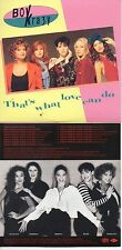 CD Single Boy Krazy - Stock Aitken Waterman - PWL That's What Love Can Do- 15-tr