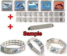 Jumping Dolphin Photo Mega Stainless Steel Italian Charms Bracelet + Tool HG56