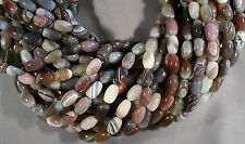 "SUPER BANDED BOTSWANA AGATE OVAL RICE BEADS 16"" STRAND 13X8MM BROWN GRAY PINK"