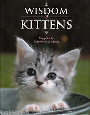 Wisdom of Kittens by Franchesca Ho Sang HC DJ Illustrated Free Shipping