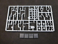 Tomb Kings Skeleton Warriors on Plastic Frame