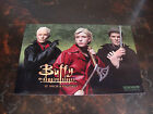 """Buffy The Vampire Slayer---Promo--5x8--For 12"""" Figures--2004--Very Hard To Find"""