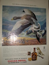 Old art advert Chivas Regal Whisky C F Tunniecliffe goose 1962 ref Z4