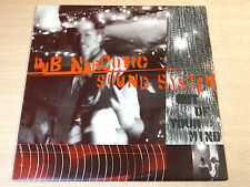 EX-/EX- !! Dub Narcotic Sound System/Out Of Your Mind/1998 K Records LP