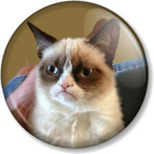 "Grumpy Cat 25mm 1"" Pin Button Badge Internet Meme Funny Pet Humour Comedy Cute"