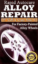 Car Silver Alloy Wheel Rim Repair Kit Professional Easy To Use (AR1)