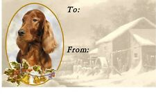 Irish Setter Christmas Labels by Starprint