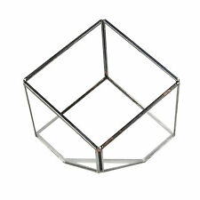 Glass Cube Shaped Terrarium Candle Holder Lantern Cactus Glasshouse Planter