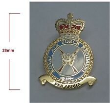 Royal Air Force Regiment Lapel pin badge