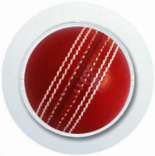 CRICKET BALL CAR TAX DISC HOLDER REUSABLE