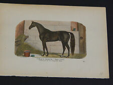 Horses, Horse prints, Hand color, c.1890's #14 Draco Prince