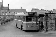 Halifax Joint Committee No.229 6x4 Bus Photo