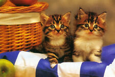 """PICNIC KITTENS"" Cats Pair Basket 2 Baby Apples BOXLESS Jigsaw Puzzle *100%*"
