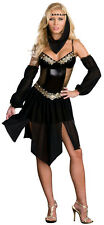 Dreamgirl Women's Sexy Harem Arabian Nights Girl Costume Adult Costume XS 0-2