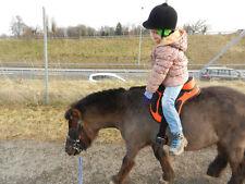 USA  Ca Synthetic English Treeless Pony Saddle Many Colors Unisex