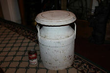 Antique NJ Farms Metal Milk Dairy Container-Unusual Size & Shape-Country Decor