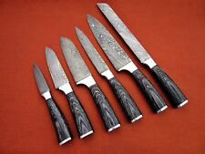 CUSTOM MADE DAMASCUS BLADE 6Pcs. CHEF/KITCHEN KNIVES SET DC 1049-6