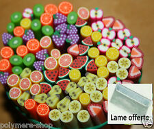 lot de 50 canes fimo fruits  ongle  polymere cane cannes + lame offerte lot 2