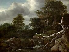 JACOB VAN RUISDAEL DUTCH FOREST SCENE OLD ART PAINTING POSTER PRINT BB5735A