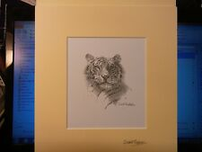 David Shepherd TWICE SIgned MINT World most famous wildlife artist Tiger Big Cat