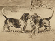 PETIT BASSET GRIFFON VENDEEN DOG GREETINGS NOTE CARD TWO STANDING DOGS PBGV