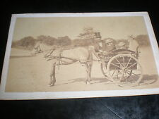 Cdv old photograph 4 people in horse cart c1870s my ref 340(2)