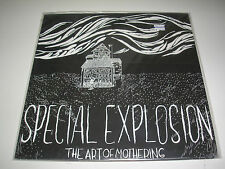 Special Explosion The Art Of Mothering EP New Mint Smokey Clear Vinyl + download